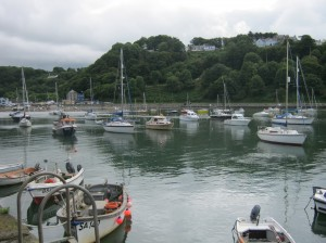 Fishguard rowing race 2012